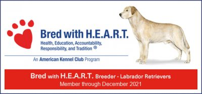 Bred with H.E.A.R.T. Approved Breeder
